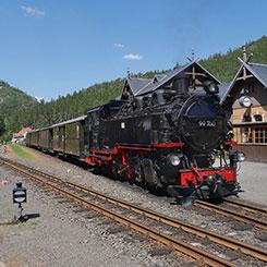 Musée - Petit train touristique